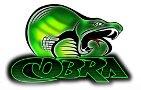 Cobra Motors