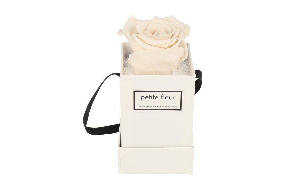 Petite Fleur Flowerbox Infinity Rosen XS quadratisch in Ivory mit 1 Rose - Pic 1