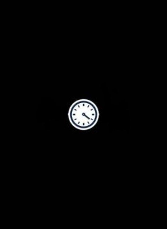 Sirius Zeitschaltuhr Top-Line System 50 cm - Pic 1